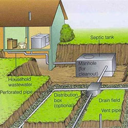 Dr Drain Natural Septic Treatment